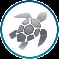 BR20_SEAQUAL_ICON_REV_Web